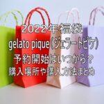 ショッピングバッグ福袋